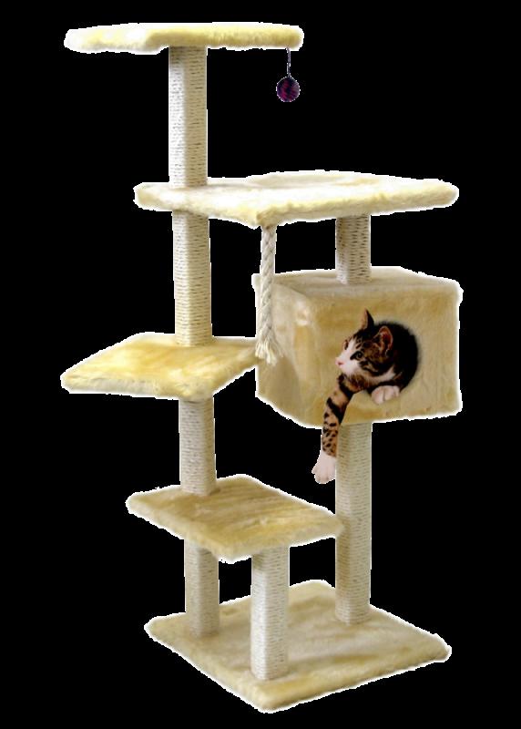 CAT DREAM | Stufenboy beige