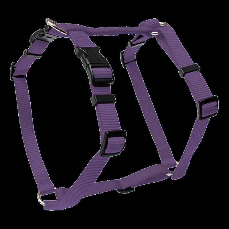 Wolters | Geschirr Basic in Violett