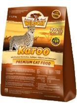 Wildcat | Karoo