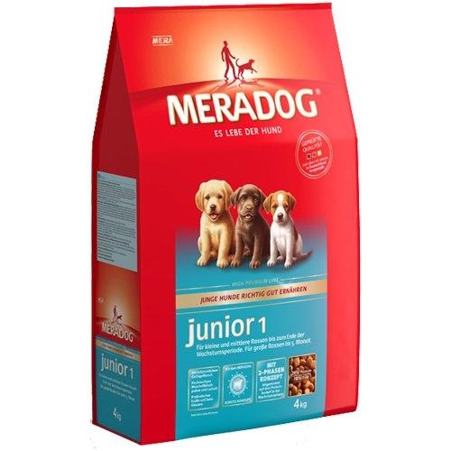 Mera Dog | Junior 1