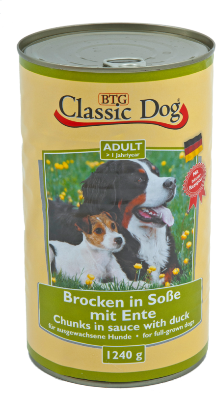 Classic Dog | Adult - Brocken in Soße mit Ente