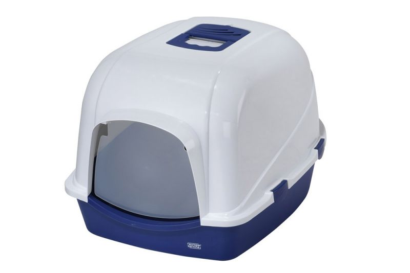 Europet Bernina | Eclipse blau