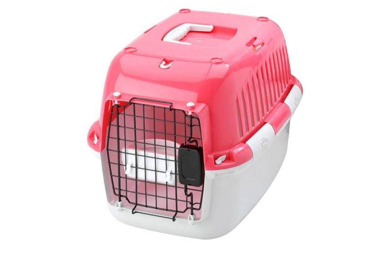 Europet Bernina | Explorer 50 Sport Edition rosa