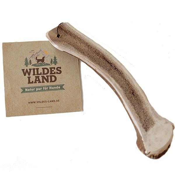 Wildes Land | Natur Hirschgeweih Halb