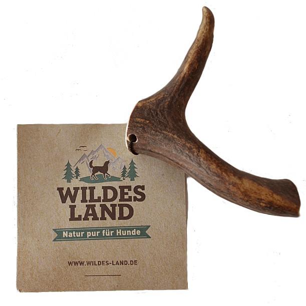 Wildes Land | Natur Rentiergeweih Ganz