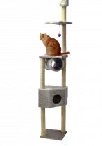 CAT DREAM | Duo Kratzstamm - grau