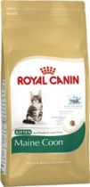 Royal Canin | Kitten Maine Coon