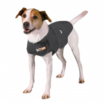Thundershirt | Hund in Grau