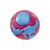 Planet Dog | Orbee-Tuff Orbee Pink/Blue