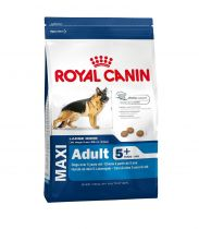 Royal Canin | Maxi Adult 5+