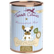 Terra Canis | Lamm mit Zucchini, Fenchel und Magerjoghurt