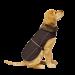 Dog Gone Smart | Jacke Aspen in Schwarz | Nylon,schwarz 1