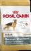 Royal Canin   Deutscher Schäferhund Adult   Glutenfrei,Geflügel,Trockenfutter 1