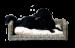 SILVIO DESIGN | Hundesofa Bonny | Naturgeflecht,grau 1