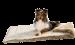 Hunter | Tierdecke Astana in Braun | Stoff,braun,beige 5