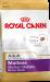 Royal Canin | Malteser Adult | Kleine Hunde,Glutenfrei,Fisch,Geflügel,Mix,Schwein,Trockenfutter 1