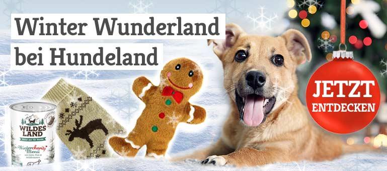 Winter Wunderland bei Hundeland