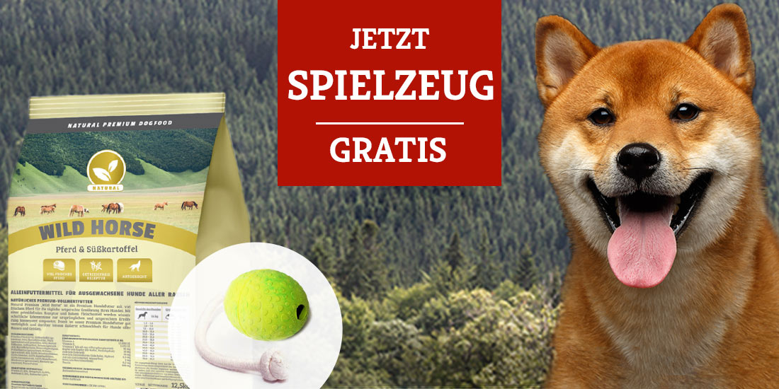 Natural Aktion - Wolters Hundespielzeug gratis