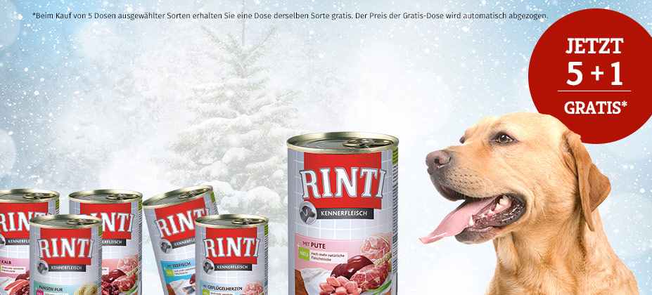 RINTI NASSFUTTER AKTION