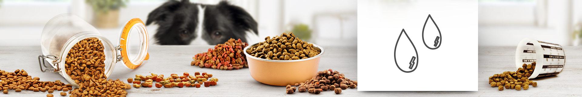 Softfutter - Halbfeuchtes Hundefutter