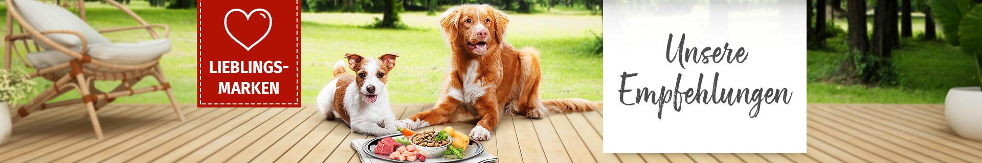 Unsere Empfehlungen - Lieblingsmarken für Hunde