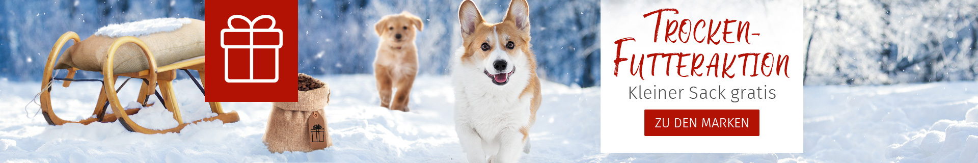 Trockenfutter Aktion für Hunde - Kleiner Sack gratis