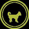 Royal Canin für kleine Hunde