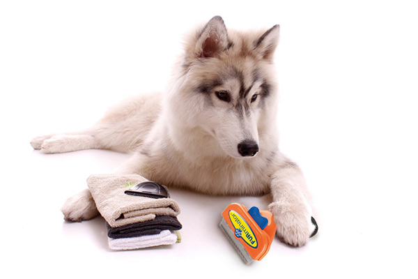 Furminator Hund