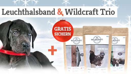 Wildcraft Leuchthalsband Aktion